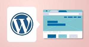 WordPress site build - Development phase